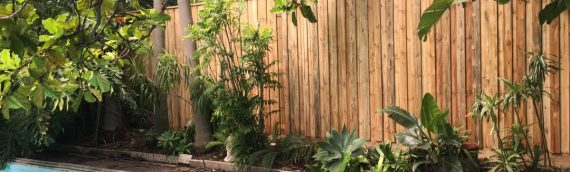 Gallery – Timber Paling Fences 009