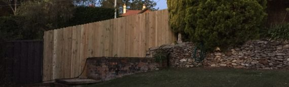 Gallery – Timber Paling Fences 012