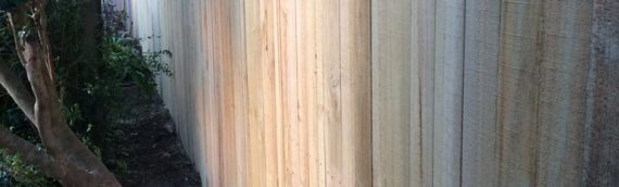 Gallery – Timber Paling Fences 014