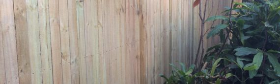 Gallery – Timber Paling Fences 015