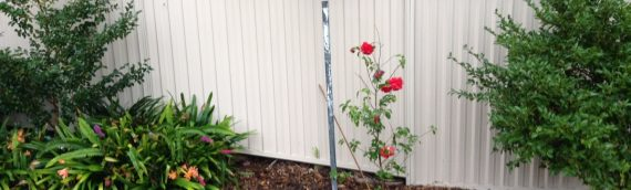 Gallery – Steel Fencing 001